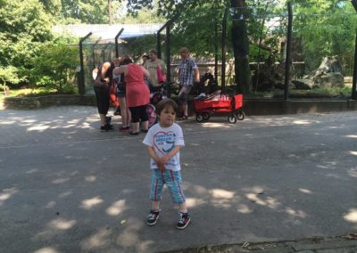 zoo-osnabru%cc%88ck-2014-6